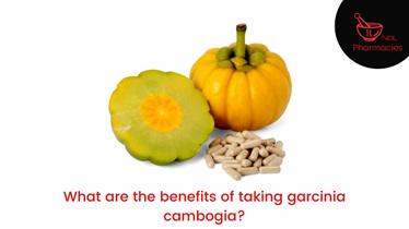 benefits of taking garcinia cambogia