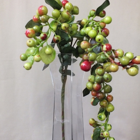 Berry Hanging 4202