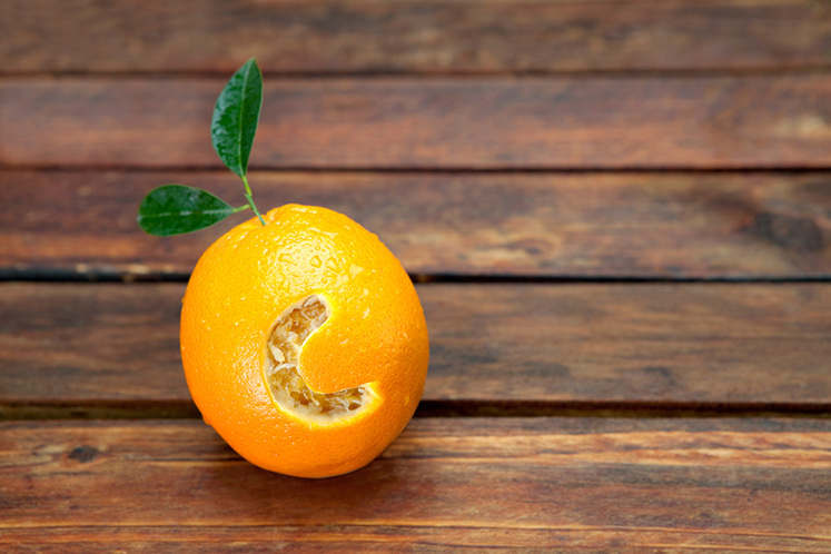 Best Vitamin C Supplements in NZ