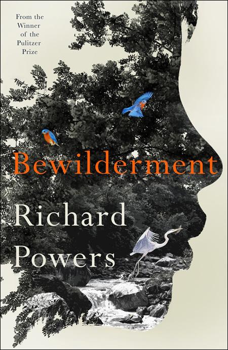 Bewilderment (Pre-order)