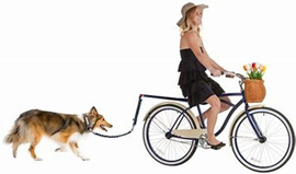 Bike attachment for your Dog #1