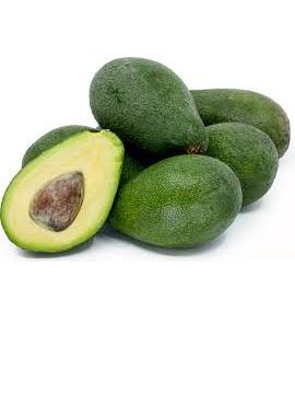 Biogro Certified Avocados FUERTE -  M, L (1)