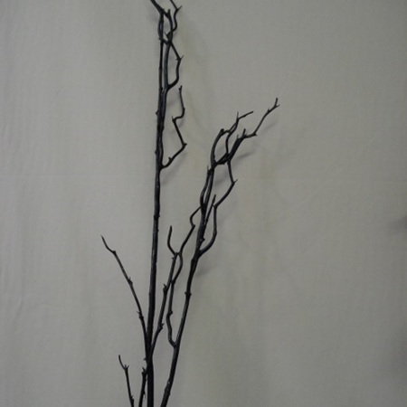 Birch twig  black 1054