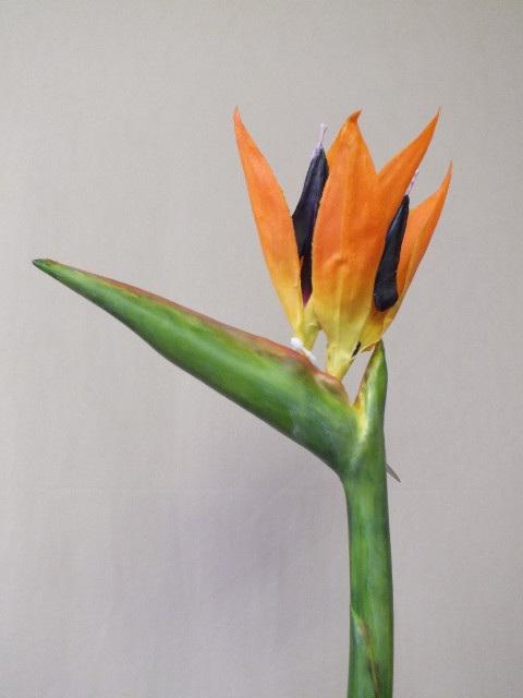 Bird of paradise 1813 the silk flower company mightylinksfo