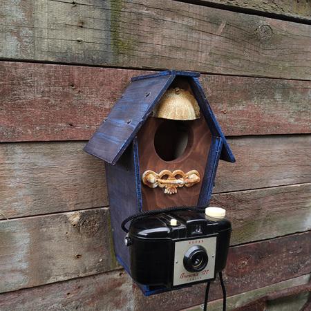 Birdhouse with Box Brownie Camera