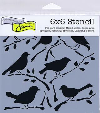 Birds  6 x 6