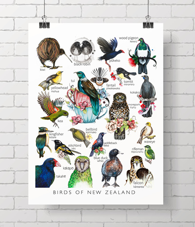 * Birds of NZ - The complete Love Lis collection *