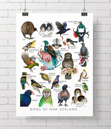 Birds of NZ - The complete Love Lis collection