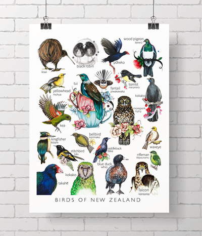 * birds of NZ - the Love Lis collection * A4