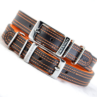 Rogue Royalty Tuscan Rogue Collar Orange