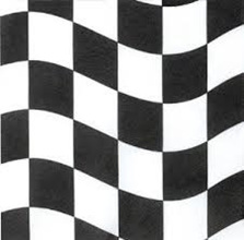 Black and White Check Napkin