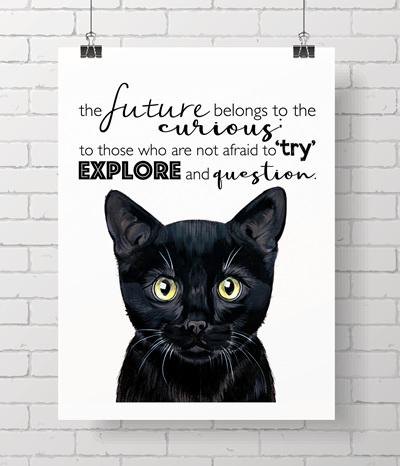 black cat with quote