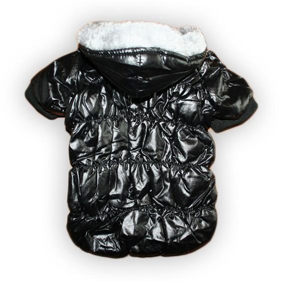 black dog bread jacket