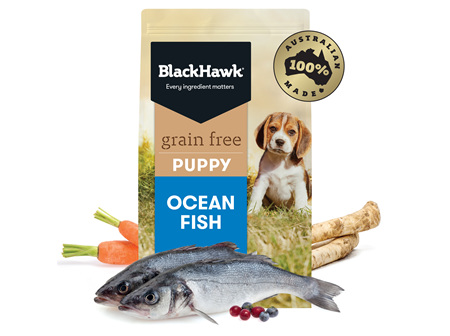 Black Hawk Grain Free Puppy Ocean Fish