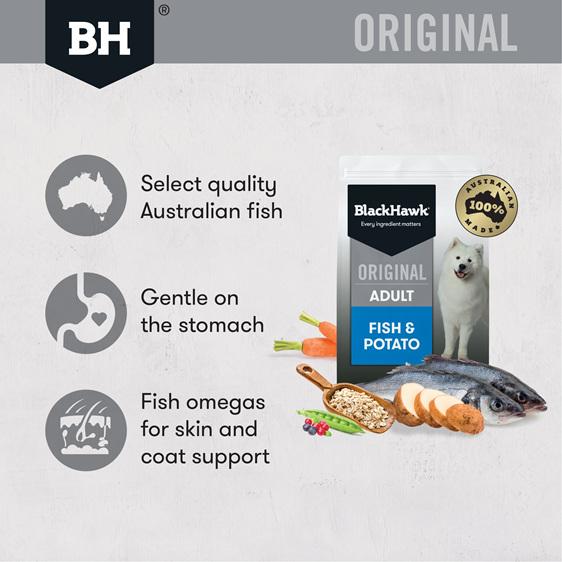 Black Hawk Original Adult Fish & Potato