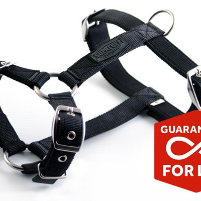 Rogue Royalty SupaTuff Slimline Harness