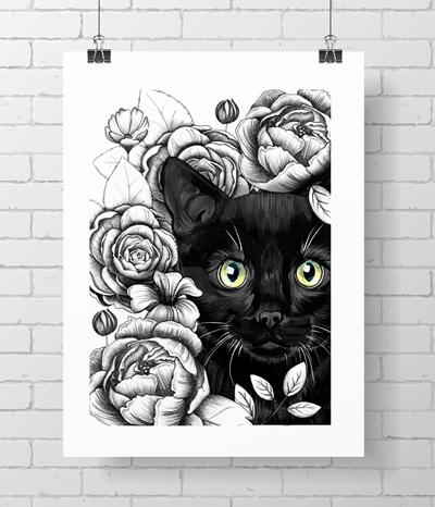 black kitty bloom