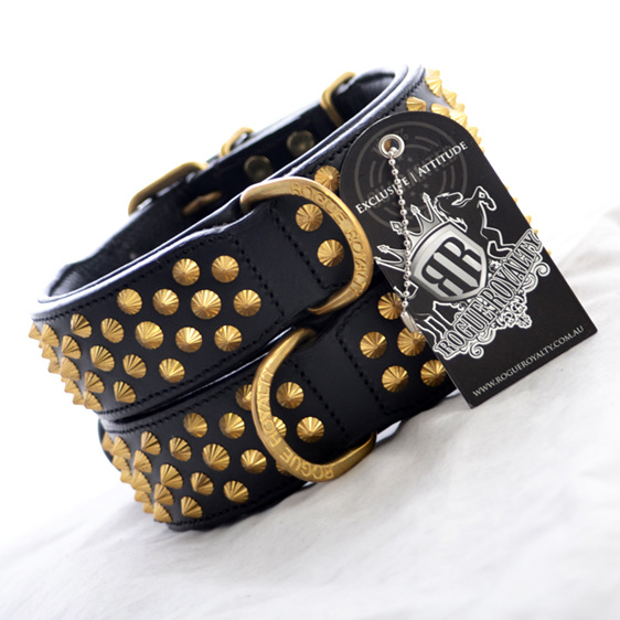 Black leather dog collar with gold studs for large breed dogs by Rogue Royalty