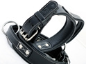 Black Leather Dog Collar with Handle