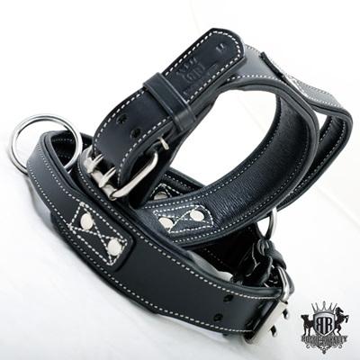 Rogue Royalty Handle/Agitation Dog Collar