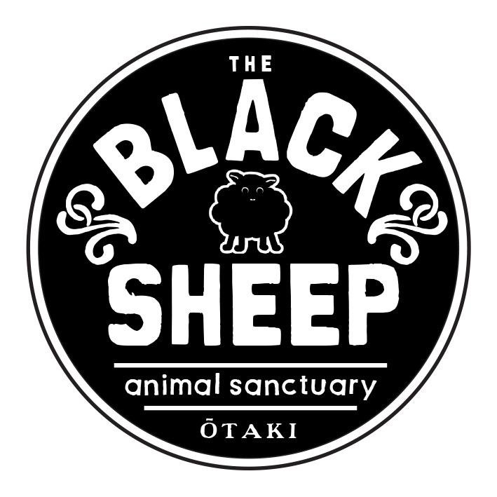 Black Sheep Sanctuary Postcards