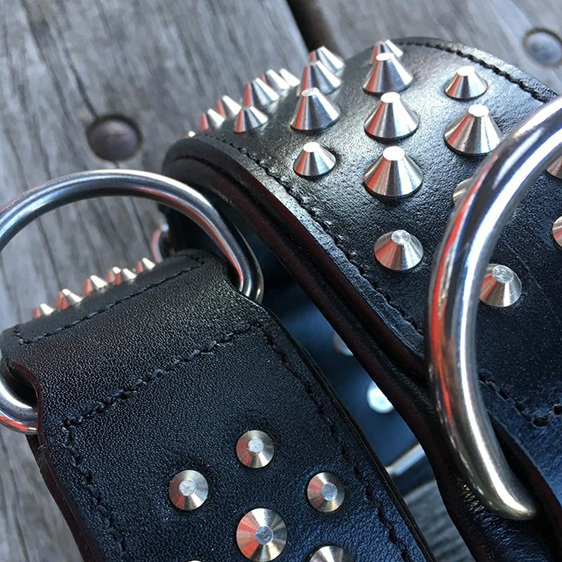 Black Studded Leather Dog Collar for Large Dogs by Rogue Royalty