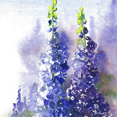 Blank Greeting Card - Delphiniums