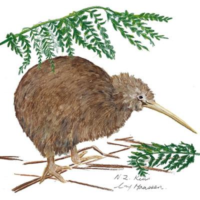Blank Greeting Card - Kiwi