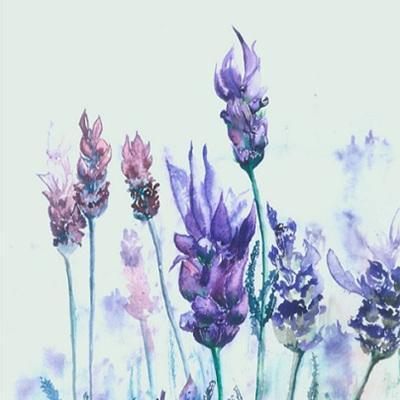Blank Greeting Card - Lavender