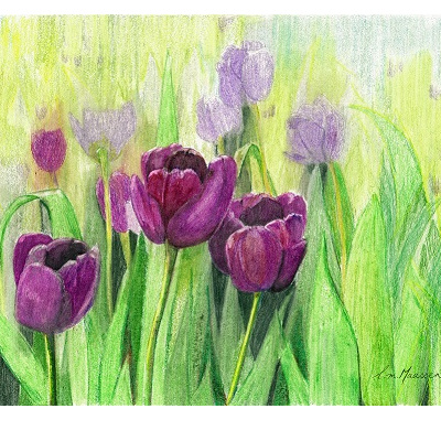 Blank Greeting Card - Tulips