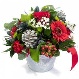 Bloomers Christmas - Tin Arrangement