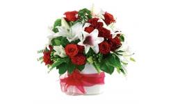 Bloomers Elegant Christmas