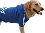 Blue adidog hoodie