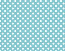 Blue Dot C350