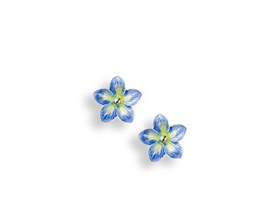 Blue Enamel Forget Me Not Flower Earrings - Small
