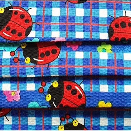 Blue Gingham Ladybugs