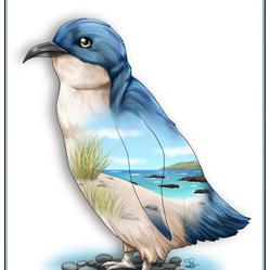 Blue Penguin Birds Eye View - A4 Print