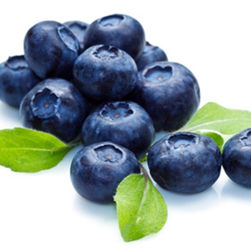 Blueberry Extra Flavour Concentrate