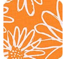 Blueberry Park 15747-369 Goldfish