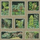 Botany Squares