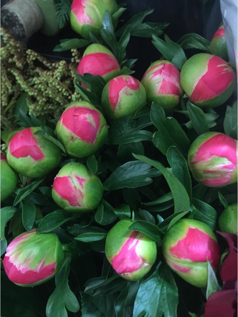 Bouquet includes Beautiful Peony