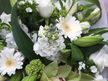 Bouquet with white and green blooms delivery Auckland suburbs