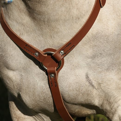 Breastplates, Girths & Cruppers