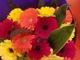 Bright Gerbera Bouquet