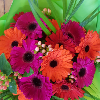 Bright Gerbera Bouquet
