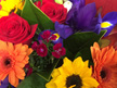 Bright Mix Tones Bouquets/Posies