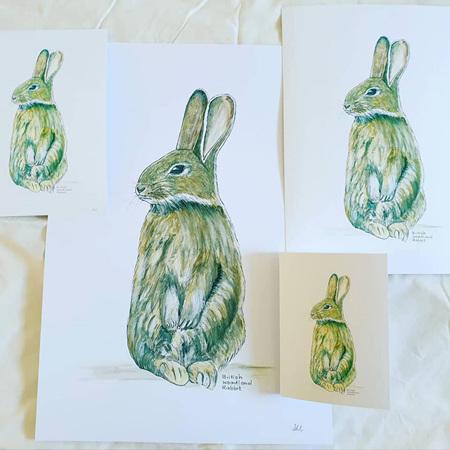 British Rabbit A5