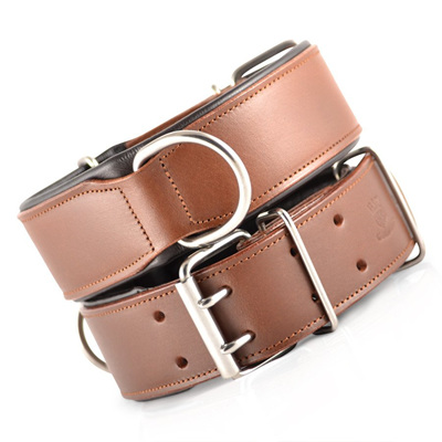 Rogue Royalty Classic Collar Brown