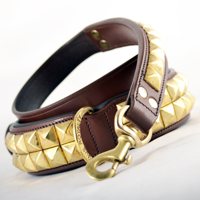 Rogue Royalty Pyramid Brass Leash