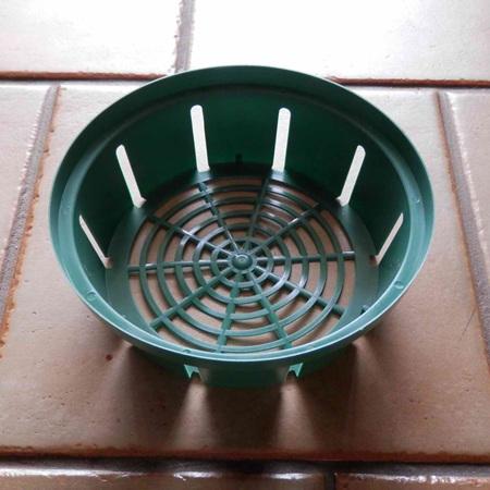 Bulb Basket - small